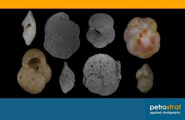 King et al 2020 Caribbean Oligo Miocene planktonic foraminiferal biostratigraphy Paper Review Featured Image