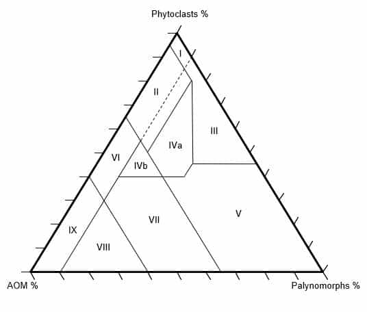 Palynofacies An guide to the Dark Side of Palynolgy Tyson Ternary Diagram Plot