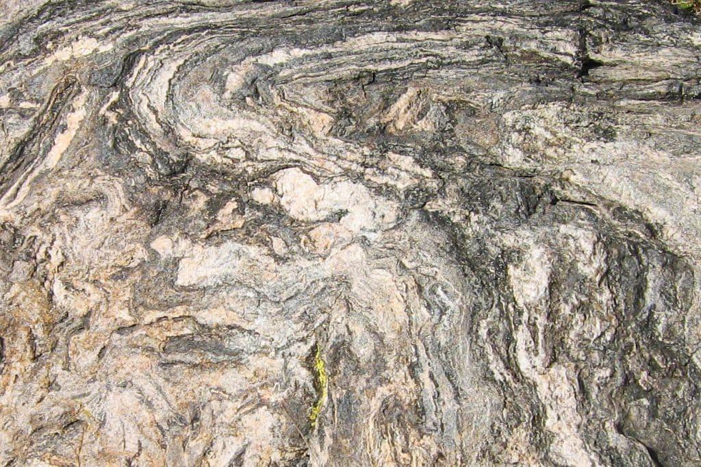PetroStrat International Rock Day Gneiss