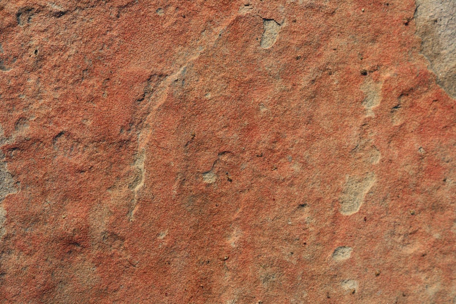 PetroStrat International Rock Day Red Sandstone